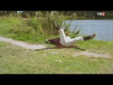 Эффект Богарне (2012) - 3 серия